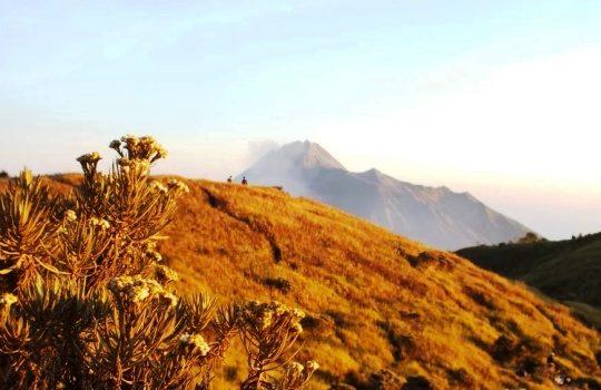 Tips Persiapan Sebelum Mendaki Gunung