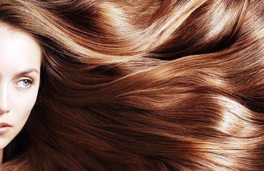 Fungsi Protein untuk Kesehatan Rambut dan Hal Penting Lainnya yang Perlu Anda Ketahui